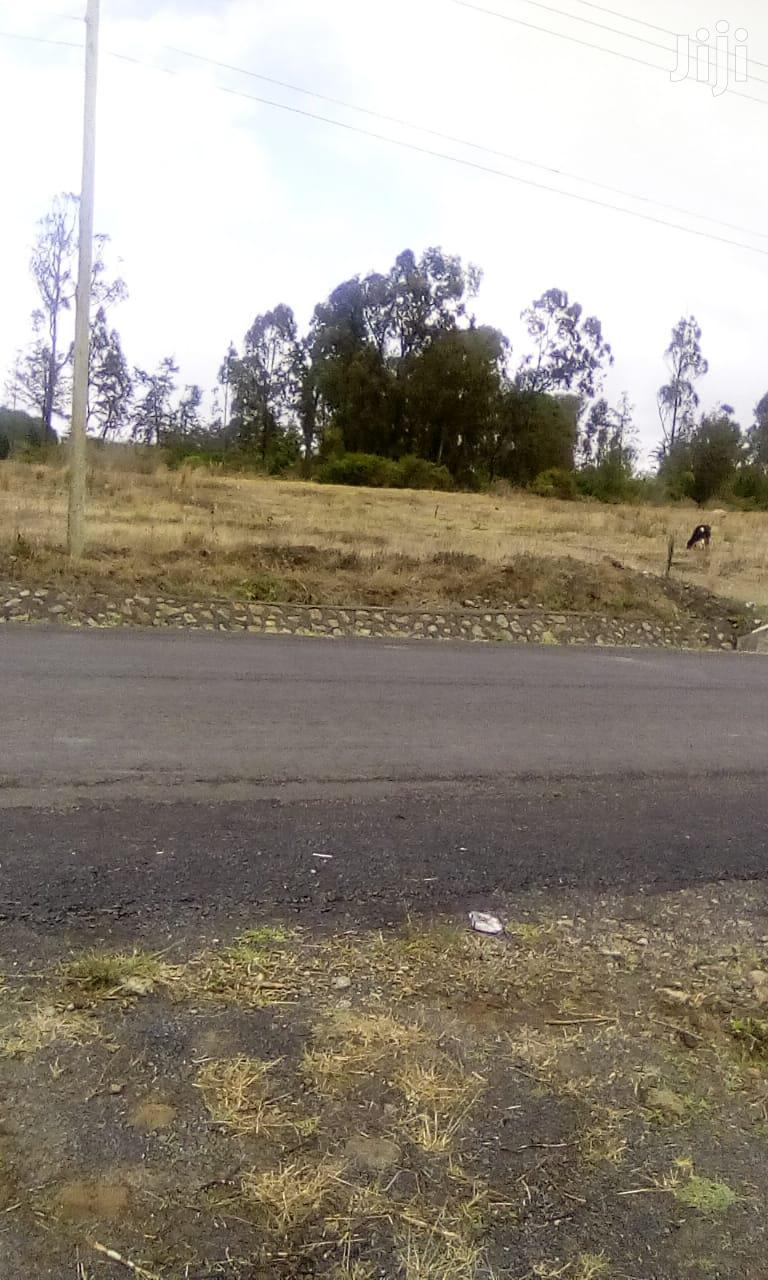Archive: 1 Acre of Land
