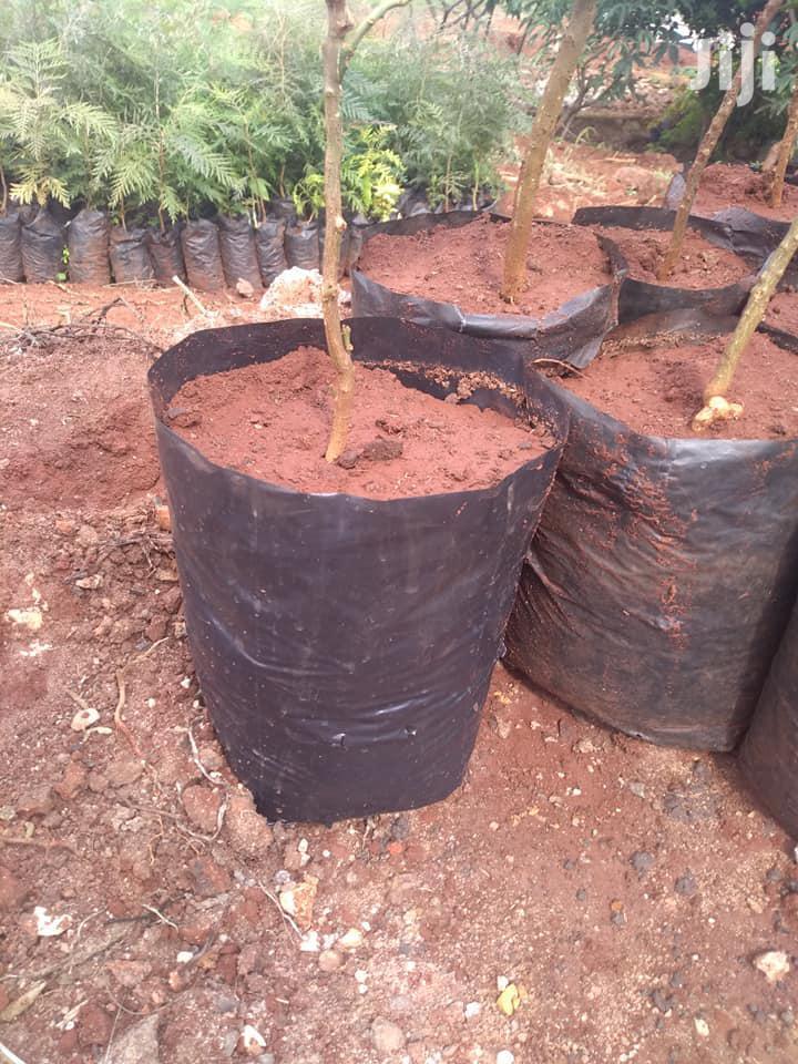 Seedling Bags All Sizes | Garden for sale in Nairobi Central, Nairobi, Kenya
