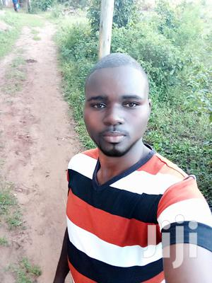 Earn Money From Home Without An Investment   Advertising & Marketing CVs for sale in Kwale, Ukunda