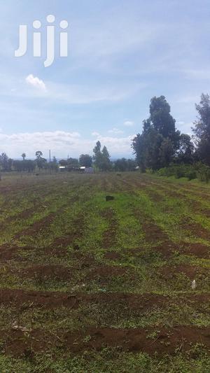 Prime Plots at Mutithi/Kirinyaga.   Land & Plots For Sale for sale in Kirinyaga, Mutithi