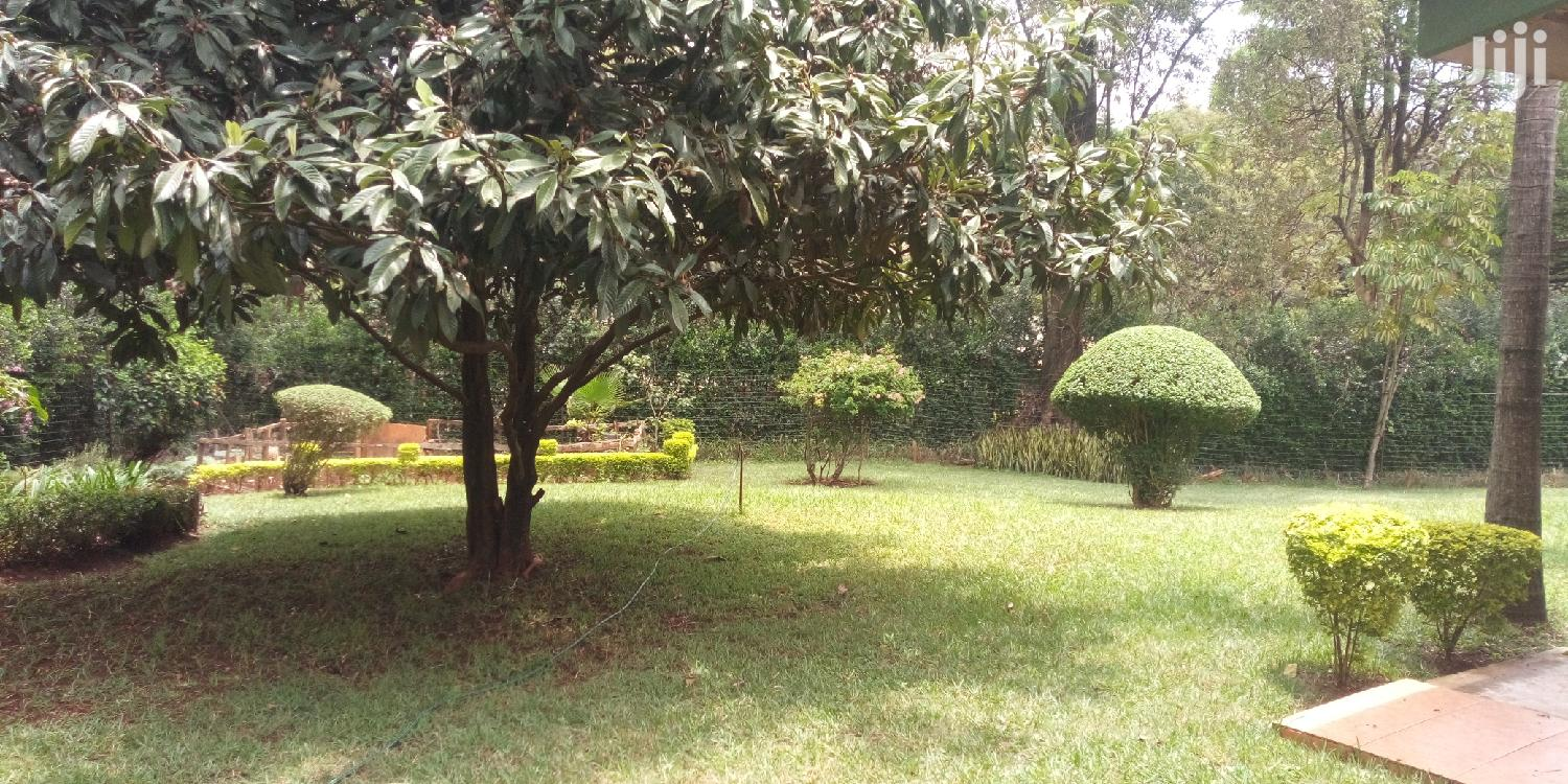 Stand Alone 3bedrooms House on Half Acre Plot to Let. | Houses & Apartments For Rent for sale in Lavington, Nairobi, Kenya