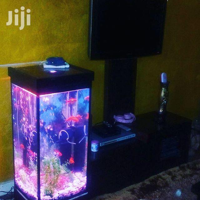 Mini- Tower Aquarium