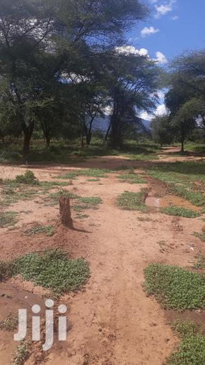 50 Acres Ranch Land at Bissil