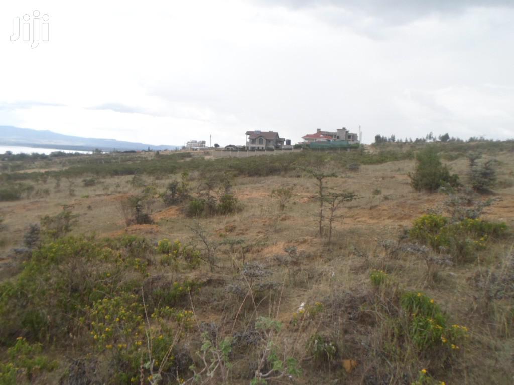 Archive: One Acre for Sale in Naivasha Unity Estate.