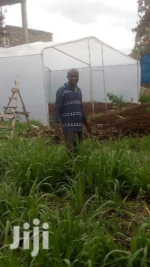 Seeking for Agricultural Employment   Farming & Veterinary CVs for sale in Kakamega, Marama North