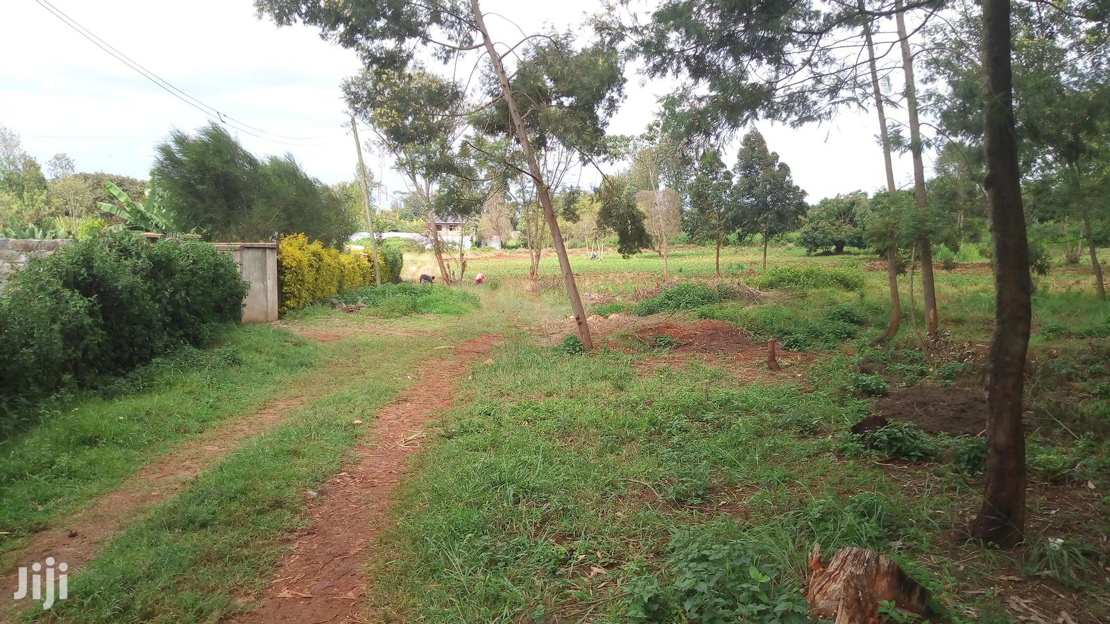 Archive: Nyeri Chaka 50 Acres at 2.5m