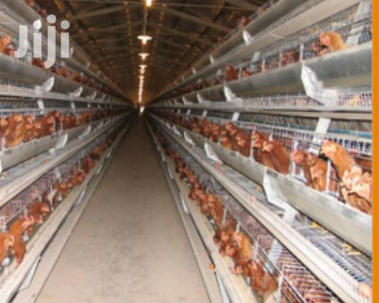 Electrogalvanised Chicken Cages   Farm Machinery & Equipment for sale in Changamwe, Mombasa, Kenya