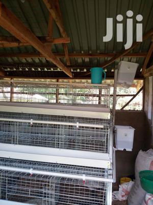 Battery Cage Sytem Prices In Kenya   Farm Machinery & Equipment for sale in Nairobi, Kahawa
