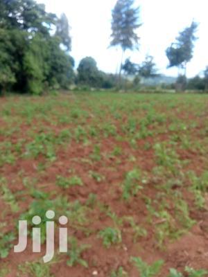 10 Acres Farmland   Land & Plots For Sale for sale in Nyandarua, Mirangine