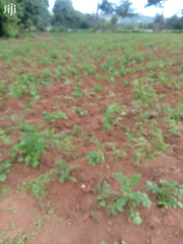 10 Acres Farmland   Land & Plots For Sale for sale in Mirangine, Nyandarua, Kenya