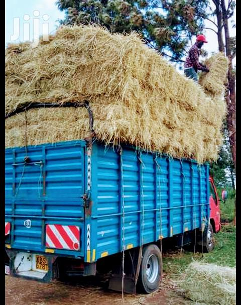 All Types Of Hay, Free Delivery