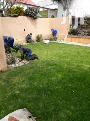 Indoor Plant Care Gardener | Housekeeping & Cleaning Jobs for sale in Nairobi