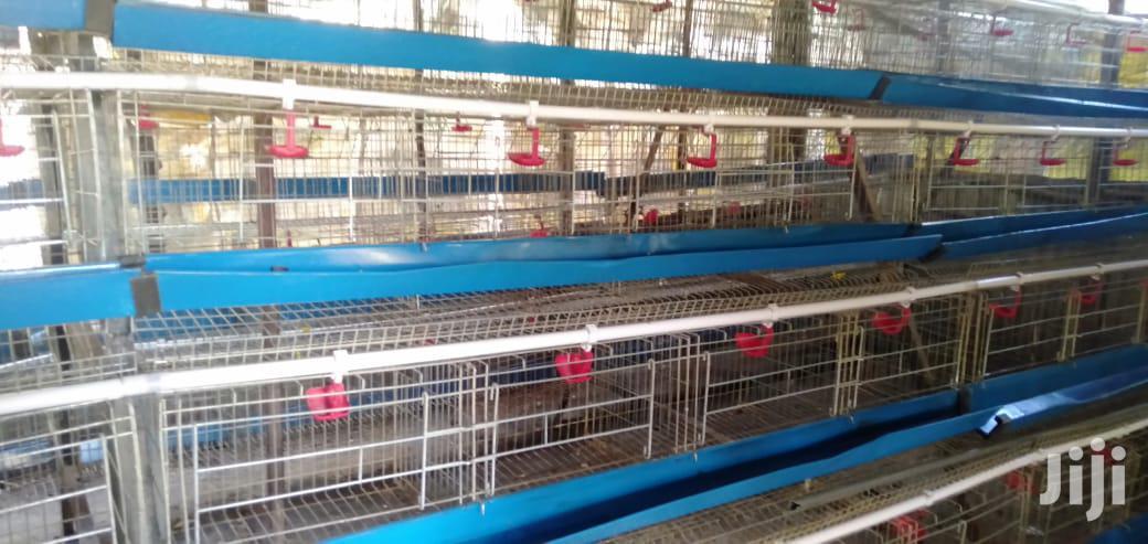 Archive: Egg Incubator