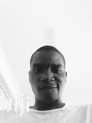 Software Developer - Python, Node JS; System and Network Administrator | Computing & IT CVs for sale in Mombasa, Mvita