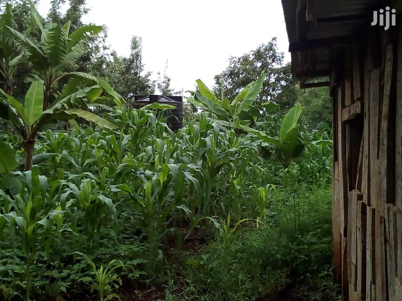 Archive: 100 By 100 Plot In Mwea Town For Sale
