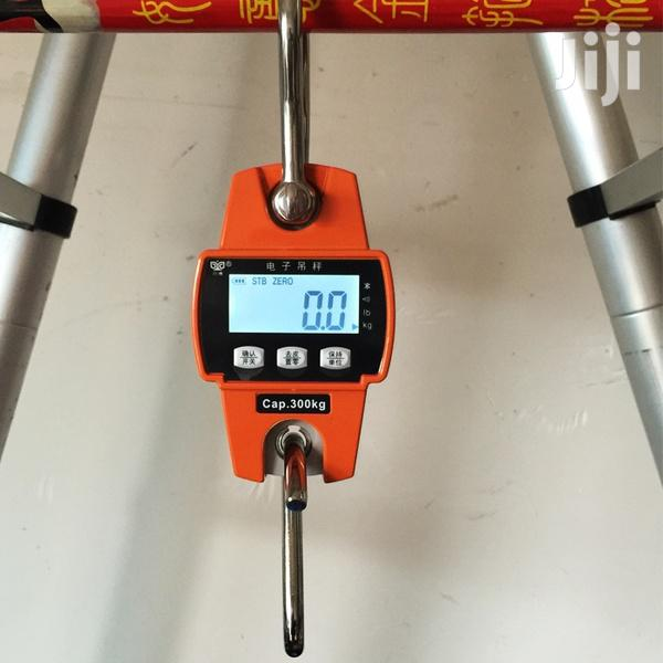 Archive: 300kgs Mini-crane Scale