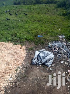 100*100ft Plot on Sale at Eginear Near Nyayo Ward Hospital   Land & Plots For Sale for sale in Nyandarua, North Kinangop