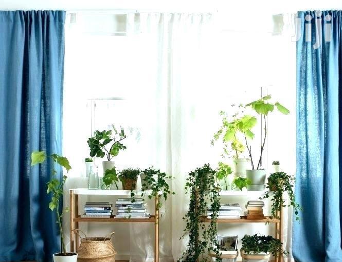 Elegant Curtains