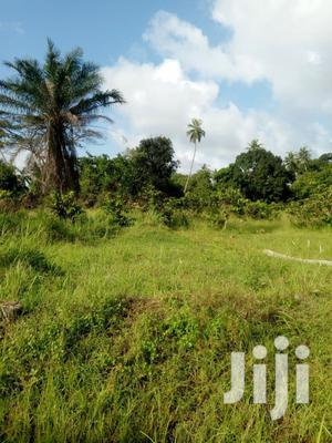 Ukunda Muhaka Area 2.5 Acres Agricultural /Residential   Land & Plots For Sale for sale in Kwale, Ukunda