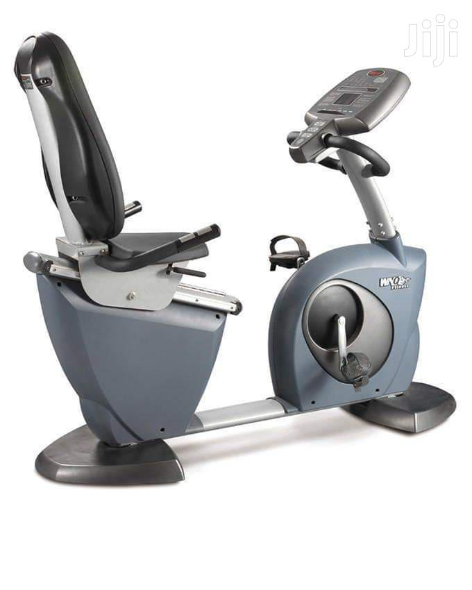 Gym Magnetic Recumbent Exercise Bikes