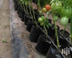 Planting Bags   Farm Machinery & Equipment for sale in Nairobi, Nairobi Central