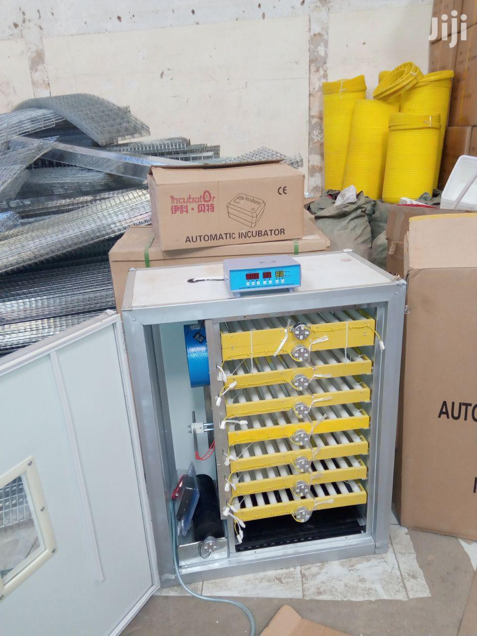 500 Ac/Dc Eggs Incubator