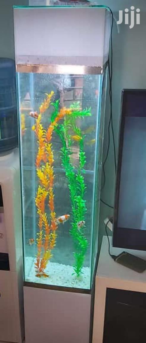 White Tower Aquarium