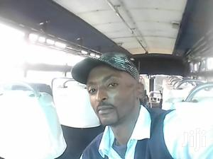 Driver Looking A Job | Driver CVs for sale in Nyandarua, Central Ndaragwa