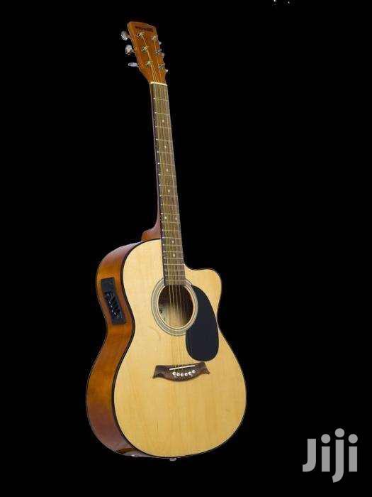 Semi Acoustic Fender+Capo+Bag+2 Picks