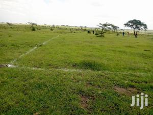 1/8 Acre Residential Plots for Sale in Kiserian