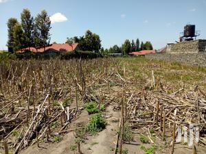 Plot For Sale In LANET (Quater Acre)