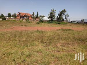 Thika Landless Kamagambo Prime 1/4 Plot