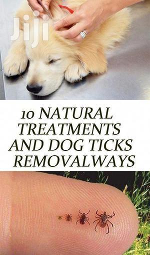 Dog Ticks Removers