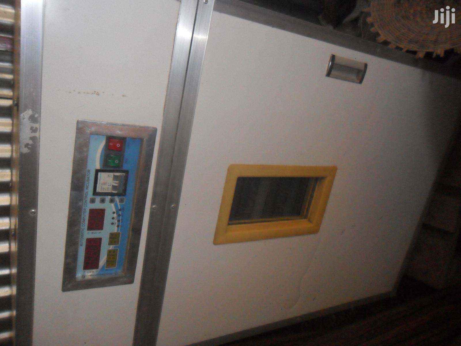 Archive: Small Incubator