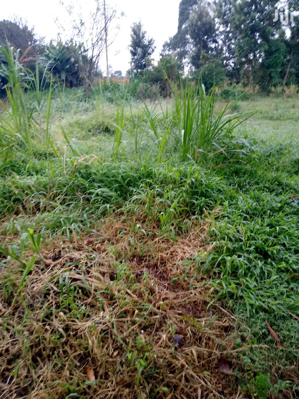50 X 100 Sagana | Land & Plots For Sale for sale in Kariti, Kirinyaga, Kenya