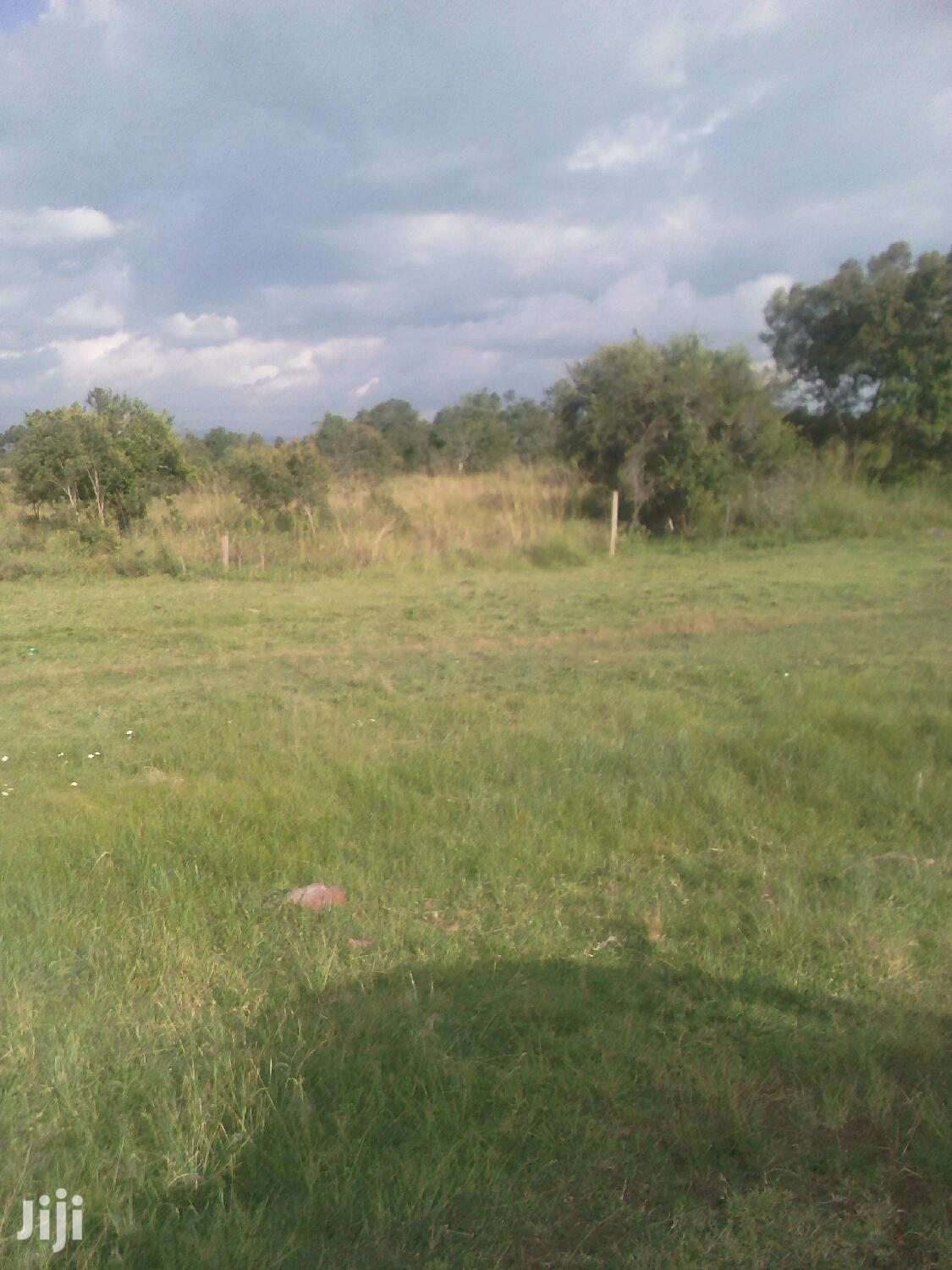 Archive: 2acres for Sale