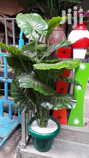 Flowers/ House Flowers/Artificial Flower   Garden for sale in Nairobi, Nairobi Central