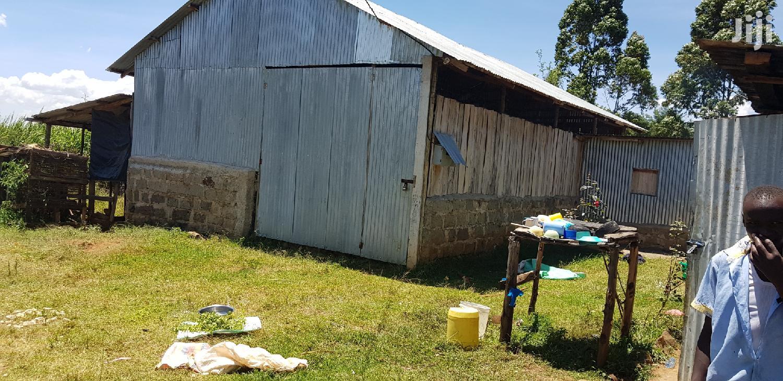 Prime 5 Acres For Sale In Cheplasgei Eldoret   Land & Plots For Sale for sale in Eldoret CBD, Uasin Gishu, Kenya