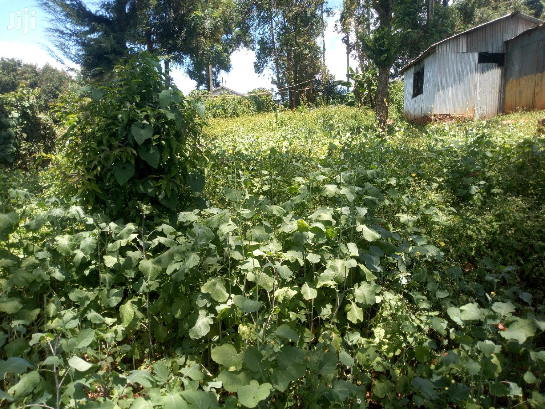 100*100 Plot Ngecha Tigoni Kiambu County | Land & Plots For Sale for sale in Ngecha Tigoni, Kiambu, Kenya