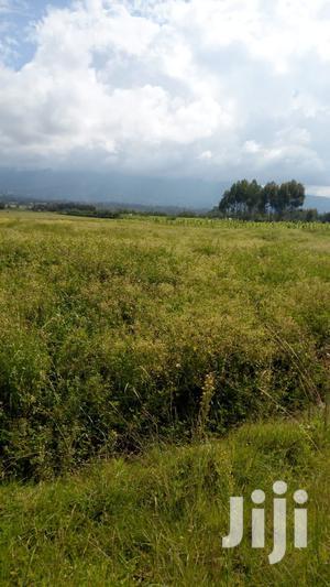 Kinangop Land For Sale   Land & Plots For Sale for sale in Nyandarua, North Kinangop