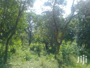 12 Acres at Mayanja E 1m   Land & Plots For Sale for sale in Bungoma, Marakaru/Tuuti