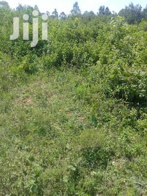 12 Acr At Mayanj Kitung   Land & Plots For Sale for sale in Bungoma, Marakaru/Tuuti