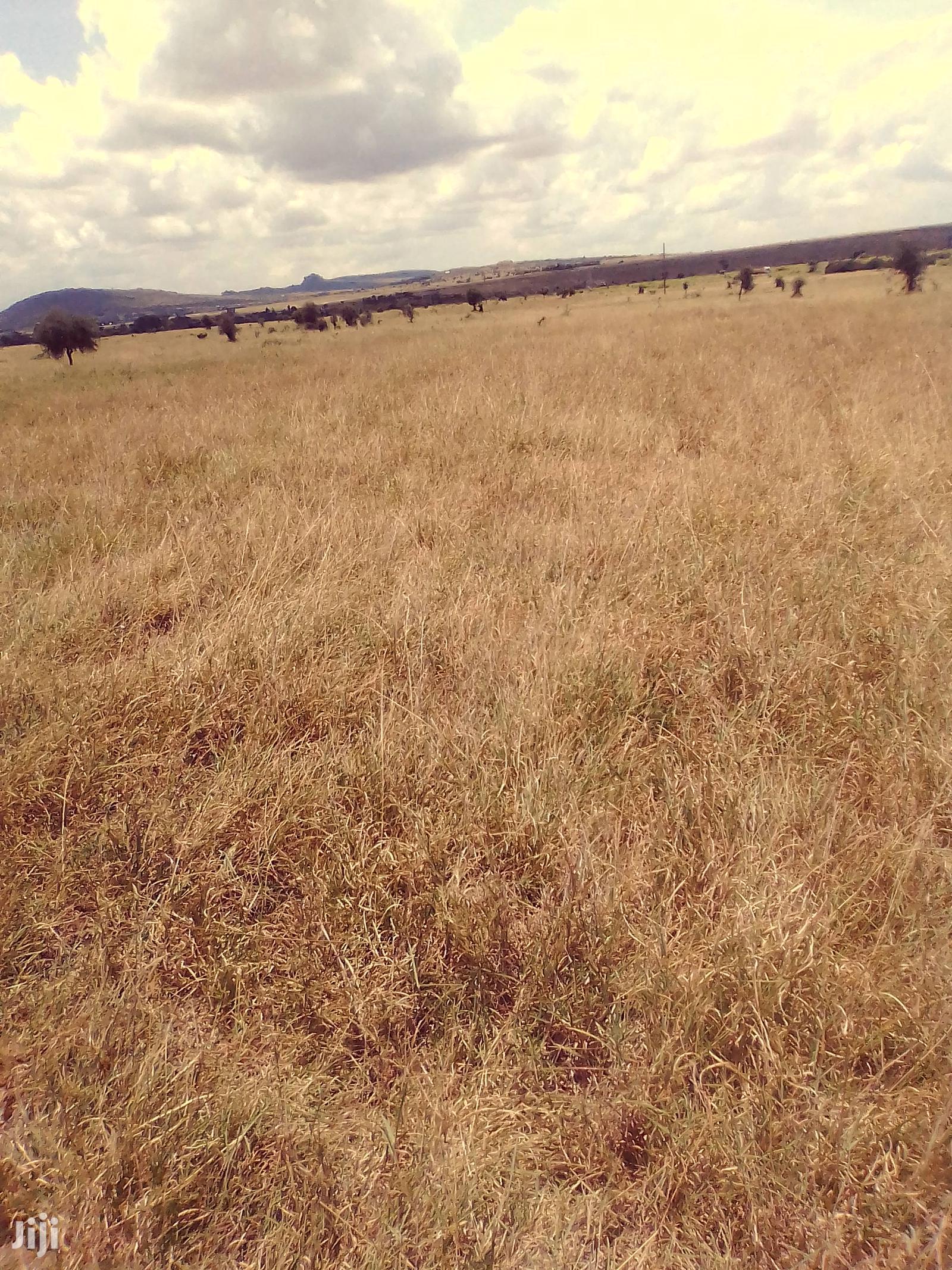 Archive: Kangundo Farm Makuyu 50 Acres of Land Asking 650k Per Acre.