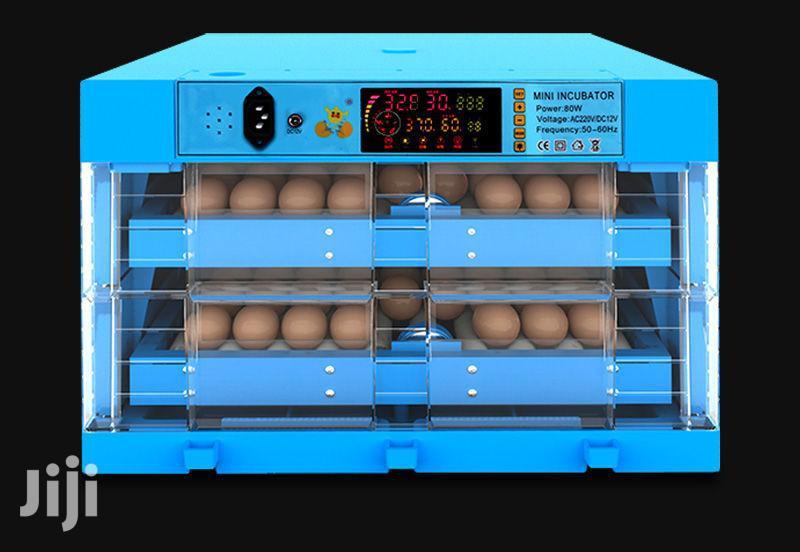 Modern Ac/Dc 64 Eggs Incubator Roller Type.