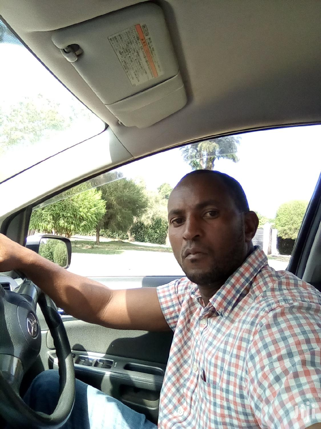 Im a Professional Driver Looking for Job