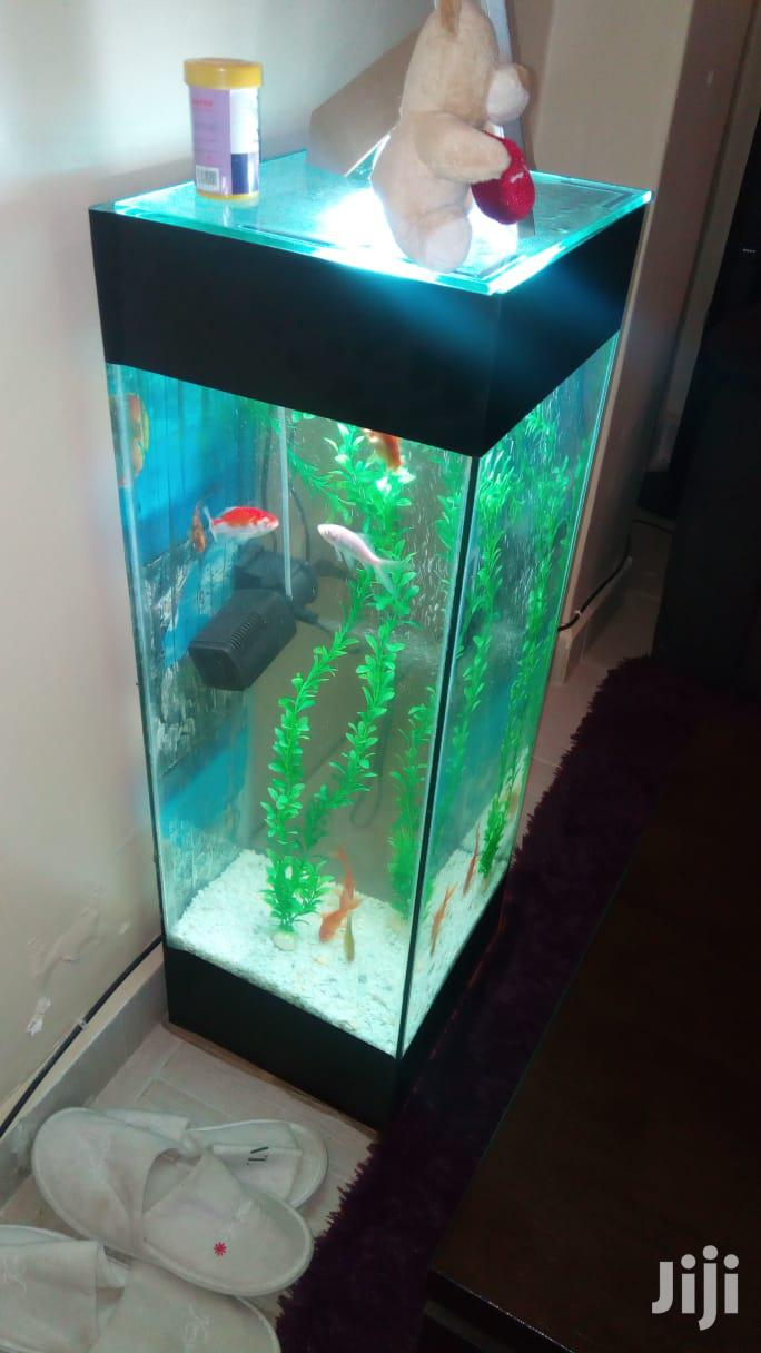 Mini- Tower Aquarium