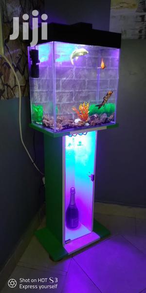 Wine-glass Cabinet Aquarium | Fish for sale in Nairobi, Westlands