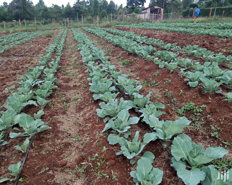 Affordable Drip Irrigation Kits For Eighth 1 Acre Plots/Farms | Farm Machinery & Equipment for sale in Langas, Uasin Gishu, Kenya