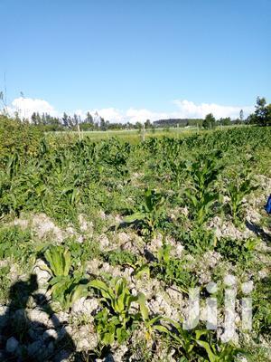 Land for Sale   Land & Plots For Sale for sale in Nyandarua, North Kinangop