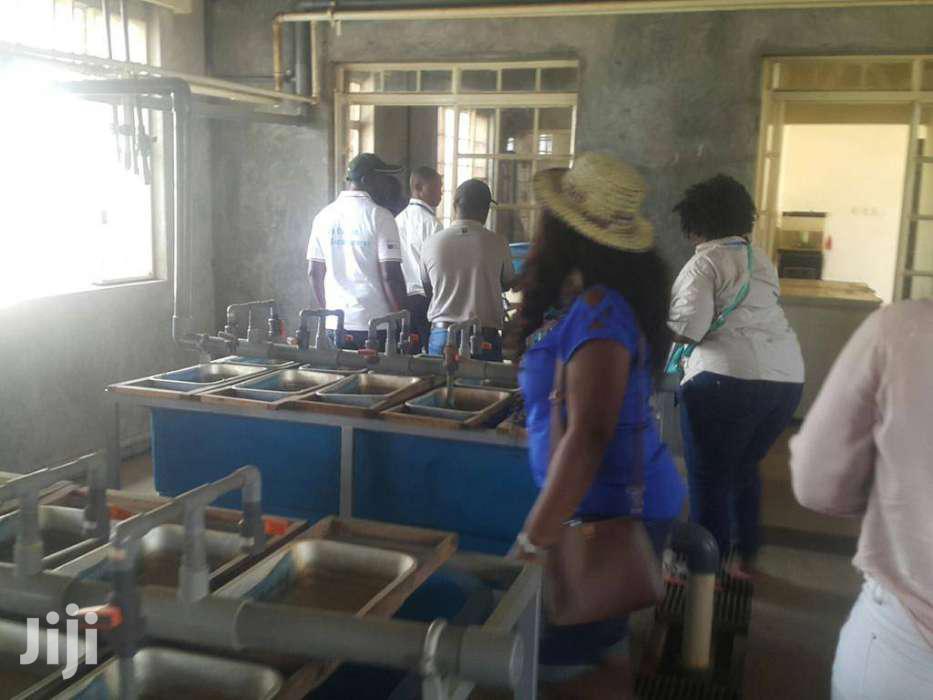 Tilapia Fingerlings On Sale | Meals & Drinks for sale in Mbirikani, Kajiado, Kenya